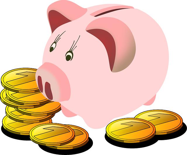 Půjčky do výplaty mohou být dobrou volbou i pro Vás